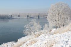 Sponda del fiume Irtysh Immagini Stock Libere da Diritti