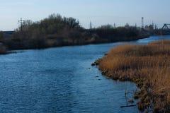Sponda del fiume, ondulazioni sull'acqua, alta erba Immagine Stock Libera da Diritti