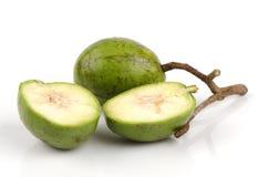 Spondiasdulcisfrukt. Arkivfoto