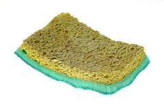 Spong seco velho Fotografia de Stock