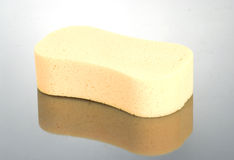 Sponge Stock Photography