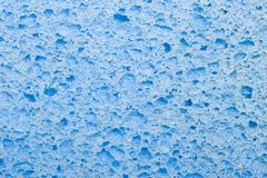 Sponge. Closeup of bright blue sponge texture Royalty Free Stock Photo