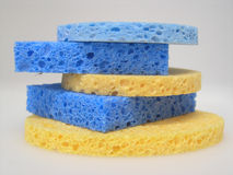 Sponge. Facial sponge Stock Photos