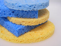 Sponge. Facial sponge Royalty Free Stock Image