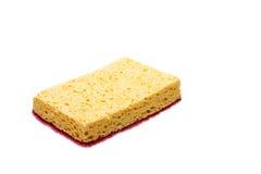 Sponge royalty free stock photo
