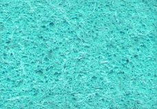 Sponge. Abstract texture Royalty Free Stock Photography