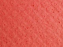 Sponge background Stock Images