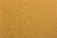 Sponge background Stock Photography