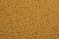Sponge background Stock Photos