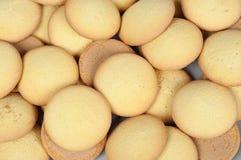 Sponge biscuit Royalty Free Stock Photo