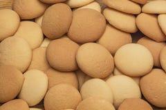 Sponge biscuits Stock Image