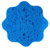 Sponge blue Royalty Free Stock Images
