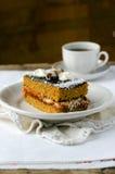 Sponge-cake с вареньем абрикоса в шоколаде Стоковая Фотография RF