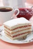 Sponge cake. Slice of sponge cake with tea and jam Royalty Free Stock Images