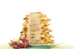 Sponge-cake Royalty Free Stock Photo