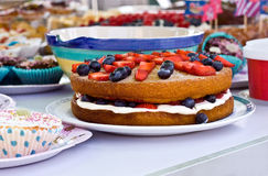Sponge cake. A fruit sponge cake on a outdoor party table stock photo