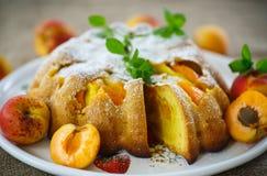 Sponge cake with apricot Stock Photos