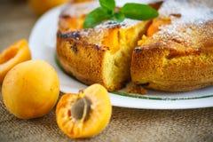 Sponge cake with apricot Stock Image