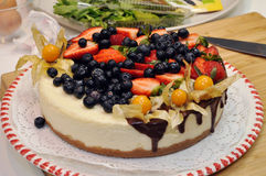 Sponge cake with berries  Royalty Free Stock Photography