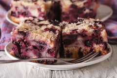 Sponge cake with blueberries close-up on a plate. horizontal Stock Images