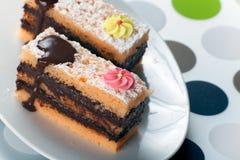 Sponge Cake Bricks with Chocolate Sauce Royalty Free Stock Photos