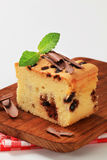 Sponge cake with chocolate chips Royalty Free Stock Image