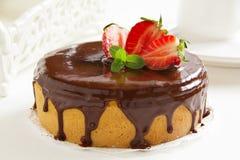 Sponge cake with chocolate cream Royalty Free Stock Photography