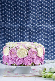 Sponge cake with cream cheese royalty free stock image