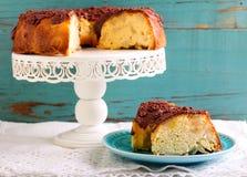 Sponge cake with fruit slices Stock Image