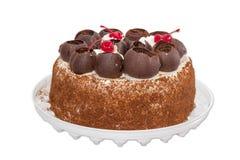 Sponge cake on a light background Stock Image