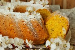Sponge cake made with cornmeal Stock Photo