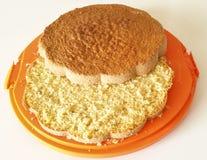 Sponge cake. On orange tray Stock Image