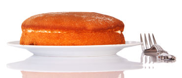 Sponge cake on a plate Stock Images