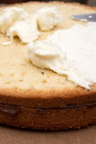 Sponge cake stock photography