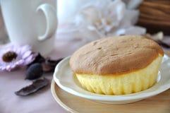 Sponge Cake on White Dish Stock Image