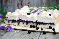 Sponge Cake With Blueberries Royalty Free Stock Photography
