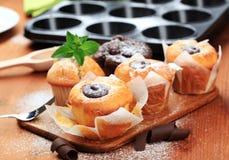 Sponge cakes Stock Image