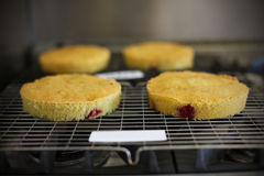 Sponge cakes with raspberries baked and cooling Stock Photos
