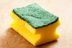 The sponge Stock Photos