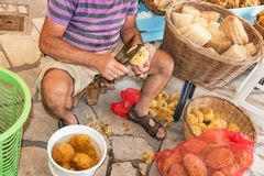 Sponge Cutter trims sea sponge tampon in street shop on Symi island Rhodes, Greece royalty free stock photo