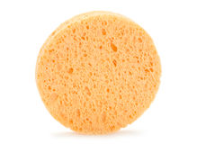 Sponge for face Stock Image
