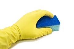 Sponge in hand Stock Image