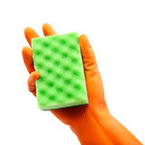 Sponge in hand with a rubber glove. Stock Image
