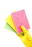 Sponge in hand with a rubber glove. Stock Photography