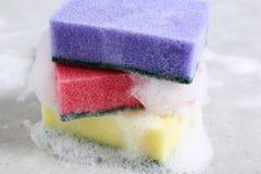 Sponge Royalty Free Stock Photography
