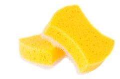 Sponge isolated Stock Image