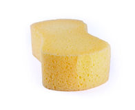 Sponge isolated on white background Royalty Free Stock Photos