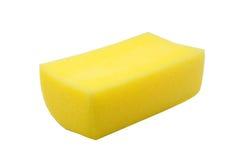 Sponge Stock Photo