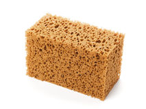 Sponge isolated on white Royalty Free Stock Images