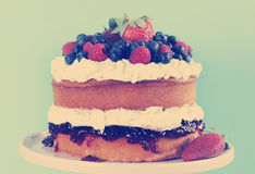 Sponge Layer Cake with fresh whipped cream and berries, with retro filter. Royalty Free Stock Photo